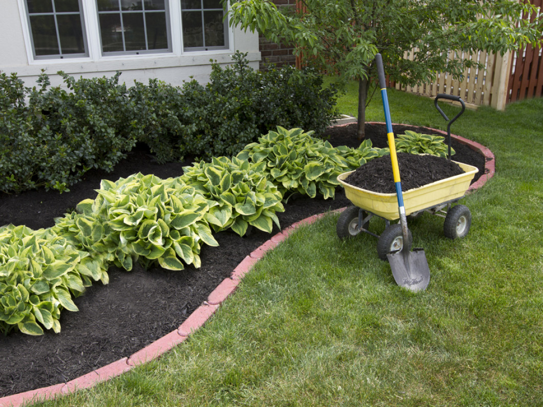 Protect and Enrich Your Garden With Fresh Mulch